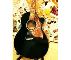 acoustic - đen
