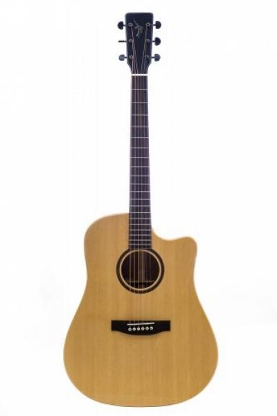 Guitar Thuận DT-04