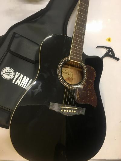 Đàn Acoustic Starsun