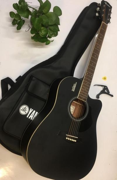 Đàn Guitar Acoustic Rosen G11