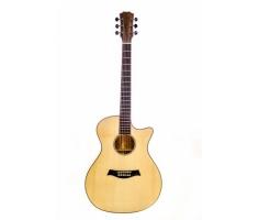 Guitar Trần TC-32