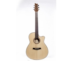Guitar Trần AC-20