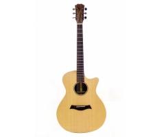 Guitar Trần TA-25C