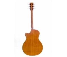 Guitar Thuận AT-02