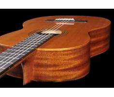 Đàn Guitar Classic Famosa FC 20C/39
