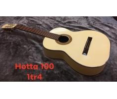 Đàn Hotta 100