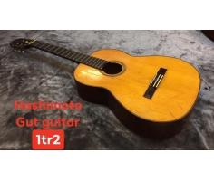 Hashimoto Gut Guitar