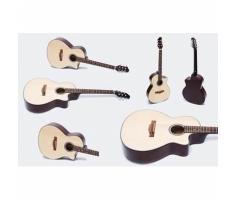 Đàn guitar Acoustic GA- 10 EL