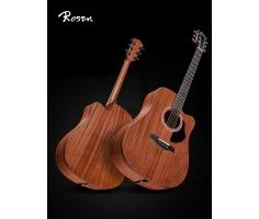 Đàn Guitar Rosen G15