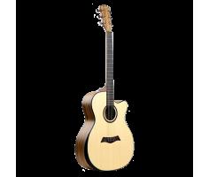 Đfan Guitar Takla M580