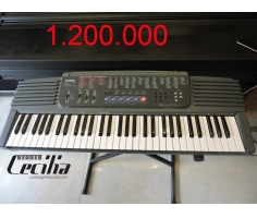 Organ Casio CT500