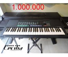 Organ Psr 150